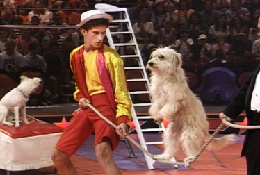 Dustin Diamond Footage from Circus of the Stars